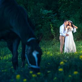 wedding by Dejan Nikolic Fotograf Krusevac - Wedding Bride & Groom ( kraljevo, vencanje, novi sad, paracin, cuprija, beograd, svadba, kragujevac, vrnjacka banja )