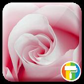 App Rose ASUS ZenUI Theme APK for Windows Phone