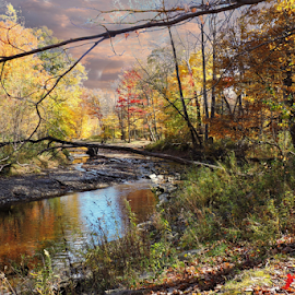 Autumn creek by Melissa Davis - City,  Street & Park  City Parks ( water, creek, fall, painesville ohio, lake metro park )