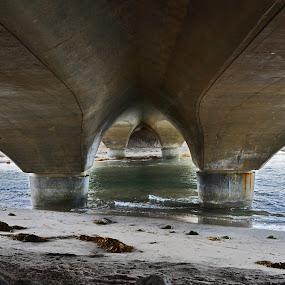 Del Mar Bridge by Peter Murnieks - Buildings & Architecture Bridges & Suspended Structures ( water, sand, mud, seaweed, grey, ocean, pwcbridges,  )