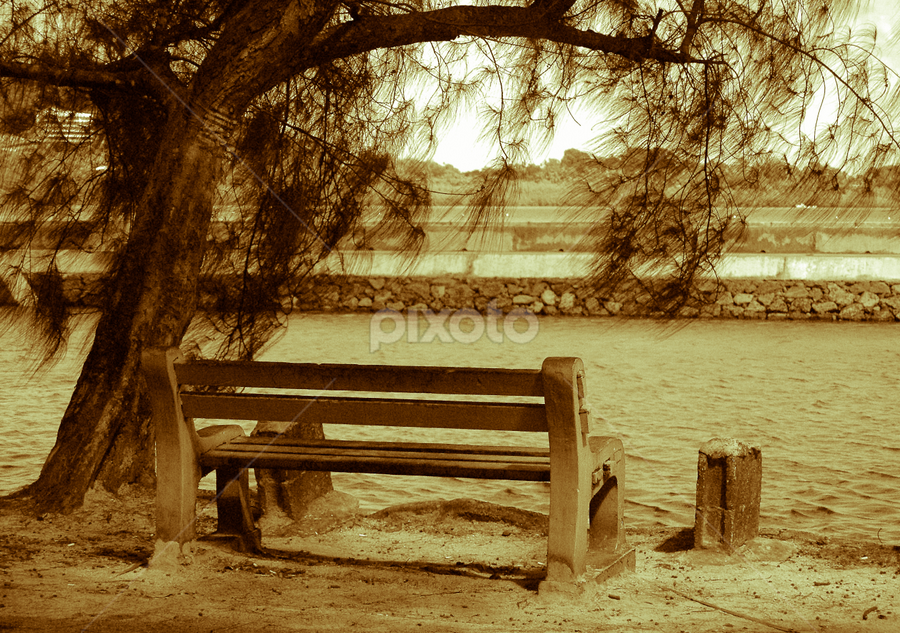 The Bench by CRISTINA  CASTRO - City,  Street & Park  City Parks ( monochrome, park, bench, seaside, seaview )