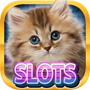 Play Casino Kitty Free Slot Machine today and experience the thrills of Vegas! APK Icon