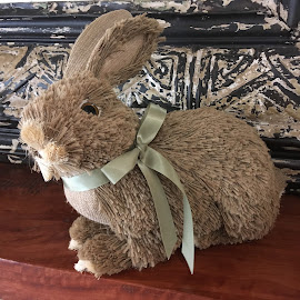 Cute Bunny by Dawn Simpson - Artistic Objects Toys ( brown bunny, artificial, straw, bunny, toy )