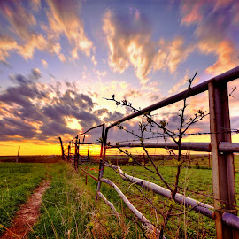 Fence Line by Derrill Grabenstein - Landscapes Sunsets & Sunrises (  )