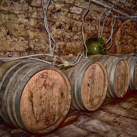Wine Stock by Marco Bertamé - Artistic Objects Other Objects ( wine, ring, wood, metal, green, glass, stone, round, brown, circle, barrel, winery, pipe )