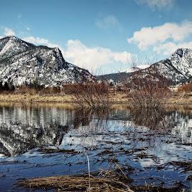 Colorado by Marta Raczkowska-Radkiewicz - Instagram & Mobile Android (  )