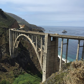 by Denise Armstrong - Buildings & Architecture Bridges & Suspended Structures