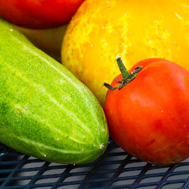 Garden Vegetables by Debbie Salvesen - Food & Drink Fruits & Vegetables ( red, green, nature, cucumber, grate, yellow, garden, tomato, vegetables, organic,  )
