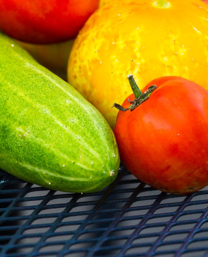 Garden Vegetables by Debbie Salvesen - Food & Drink Fruits & Vegetables ( red, green, nature, cucumber, grate, yellow, garden, tomato, vegetables, organic,  )