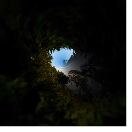 Virtual tunnel sky by Gia Gee - Digital Art Things ( tunnel view, virtual view, trees, virtual sky, tree canopy )