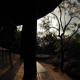 by Richard Harpur - Buildings & Architecture Other Exteriors ( sunset, outdoor, patio, bushlife, shadows )