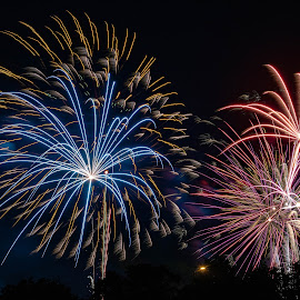 Star Bursts by Jim Salvas - Public Holidays July 4th ( blue, night, live composite, fireworks, lancaster )