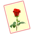 Greeting Cards Gallery - Free APK for Bluestacks