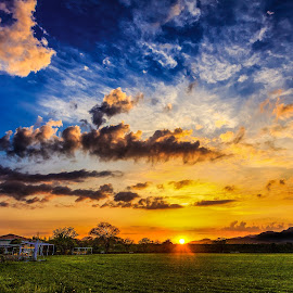 A Cloudy Sunset by Bakhtiar Ahmed - Landscapes Sunsets & Sunrises ( orange, sky, tree, nature, grass, blue, green, sunset, cloud, landscape, sun,  )