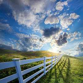 The Other Side of Somewhere by Phil Koch - Landscapes Prairies, Meadows & Fields ( vertical, wisconsin, ray, white fence, yellow, travel, leaves, phil koch, storm, landscape, rustic, spring, photography, sun, life, sky, nature, tree, autumn, weather, perspective, horizons, light, office, clouds, orange, park, art, twilight, agriculture, horizon, scenic, morning, portrait, shadows, field, fence, red, blue, serene, amber, sunset, meadow, summer, trees, beam, lines, sunrise, garden,  )