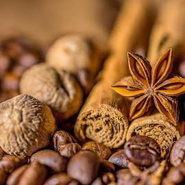 Exotic flavours by Ovidiu Sova - Food & Drink Ingredients ( ingredients, cinnamon, coffee beans, star anise, nutmeg )