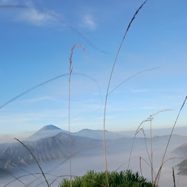 Bromo  by Cynthia Dewi Kembara - Instagram & Mobile Android ( #mountain, #landscape, #blue, #nature, #sky )