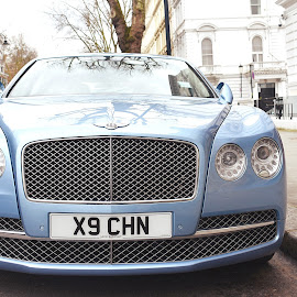 Bentley by Stephen Avery  - Transportation Automobiles