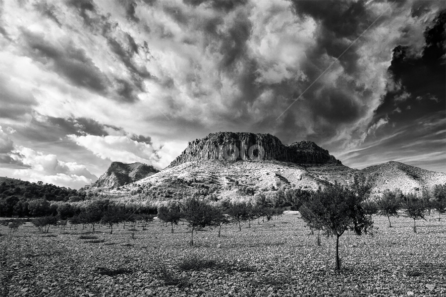 Volcano awakening. by Francisco Garcia Rios - Black & White Landscapes ( monochrome, wbpa, luz, hellín, españa, black and white, exterior, paisaje, recesvintus, pitón volcánico, landscape, spain, mountains, volcano, sky, nature, cielo, tokina 11-16, nubes, cloudy, albacete, light, naturaleza, clouds, árboles, balnco y negro, cancarix, outdoors, montañas, trees, aire libre, volcán,  )