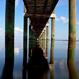 by Basia Lewandowski - Landscapes Beaches