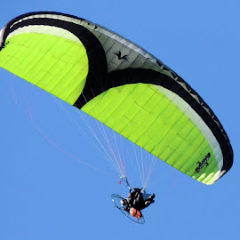 Dancing On Air by Becky Luschei - Sports & Fitness Other Sports ( flight, dancing, fly, parasailers, capture, air, motorized )
