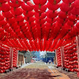 Lantern Tunnel by Xiufen Gu - City,  Street & Park  Street Scenes ( lanterrns,  )