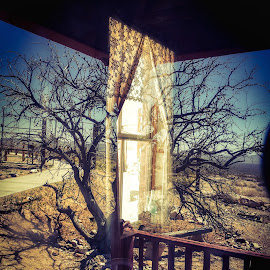 Light reflection  by Nelida Dot - Abstract Light Painting ( art, sunlight, light, reflections, tree, window )
