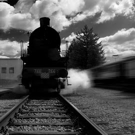 Locomotive by Cesare Riccardi - Transportation Trains ( railway, locomotive, train )