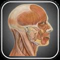 App Атлас анатомии человека APK for Kindle