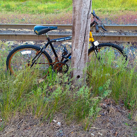 Abandoned Bike by David Stone - Instagram & Mobile iPhone ( train tracks, bike, old bike, square image, utility pole, iphoto, bicycle )