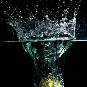 Apple Splash by Marc Rossmann - Food & Drink Fruits & Vegetables ( water, spray, splash, apple, drops, submerge )