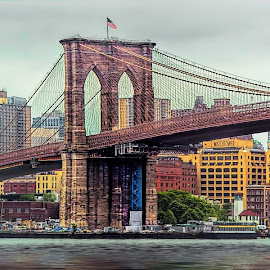 Have I Got A Bridge For You by Maggie Magee Molino - Buildings & Architecture Bridges & Suspended Structures ( water, structure, bridge, brooklyn, city )