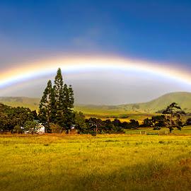 Rainbow @ Waimea by Sagarika Roy - Landscapes Prairies, Meadows & Fields ( waimea, nature, nature up close, weather, romantic place, travel, landscape, rainbow, hawaii, natural beauty )
