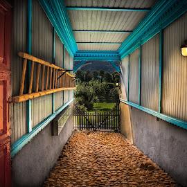 Looking out by Geir Blom - City,  Street & Park  Neighborhoods ( lights, ladder, doorway, cobblestone, gate )