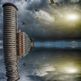 Vlissingen,the netherlands by Egon Zitter - Digital Art Places ( reflection, tower, seagul, appartments, flat, vlissingen )