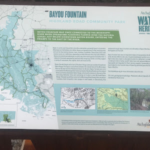 Bayou Fountain was once connected to the Mississippi River when springtime flooding flowed over the natural levees just below downtown Baton Rouge, entering the swamps to the east of the river. ...