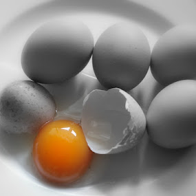 Just eggs by Dasha Herman - Food & Drink Ingredients