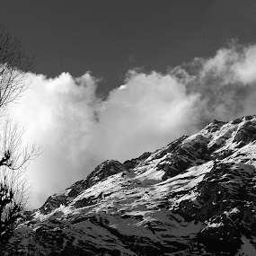 The bold mountains... by Avijit Basak - Landscapes Mountains & Hills ( mountain, tree, cloudes, ice, pwcbwlandscapes )
