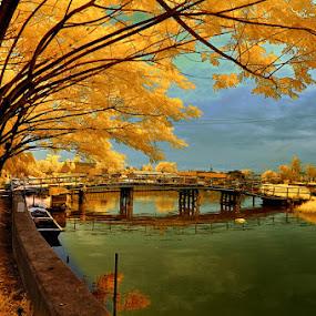 Kehewanan Bridge by Daniel Chang - Landscapes Travel ( fall, color, colorful, nature,  )