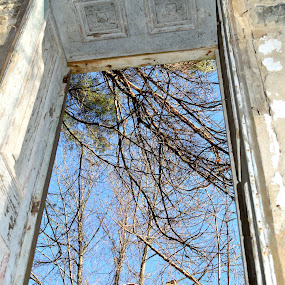 Through the Window by John Ogden - Buildings & Architecture Architectural Detail