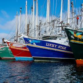 Shrimp Boats Take a Break by Jan Irons - Transportation Boats ( shrimp boats, key west,  )