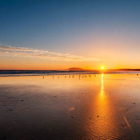 Seven Mile Sunset by Andy Hutchinson - Landscapes Beaches ( seven mile beach, sand, sunset, australia, pacific, ocean, gerroa )