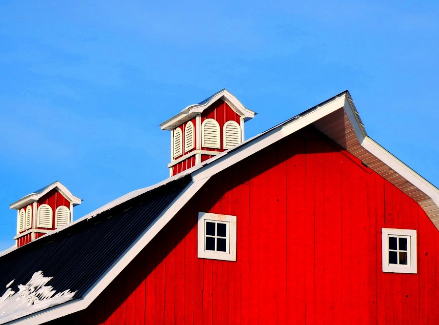 The Barn by Karl Olmanson - Buildings & Architecture Other Exteriors ( roof, farm, building, red, barn )