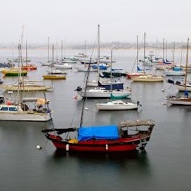 Boats in Monterrey by Vinod Kalathil - Transportation Boats ( waterscape, bay, california, ocean, boat )