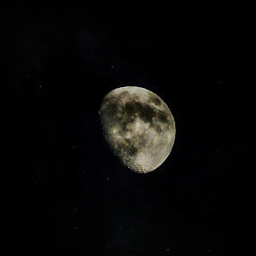 Moon by Amanda Burton - Landscapes Starscapes ( moon, space, night sky )