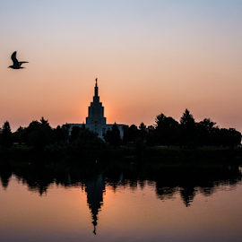 Idaho Falls Temple by Brian Allison - Landscapes Waterscapes ( temple, reflection, sunrise )
