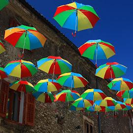 Flaying Colors by Mirjana Baćac - City,  Street & Park  Street Scenes