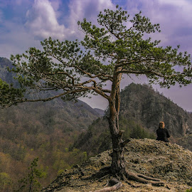 by George Enescu - Landscapes Travel ( mountain, girl, tree, lonely )