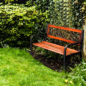 Sitting area by Meeta Thakur - Artistic Objects Still Life ( area, corner, bench, nature, space )