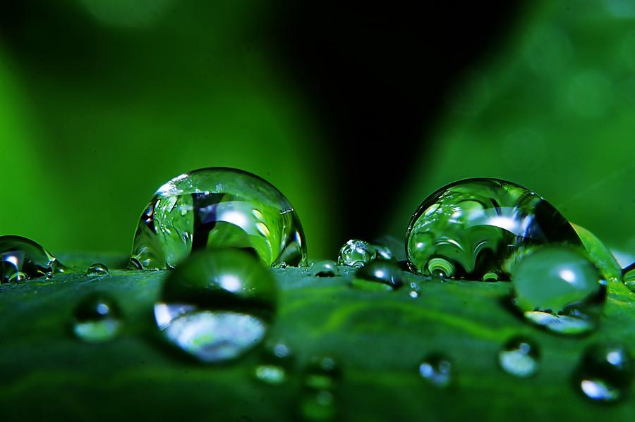 diamond of nature by Sengkiu Pasaribu - Abstract Water Drops & Splashes ( pwcabstractdiamonds-dq )